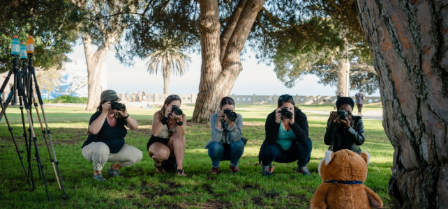 San Pedro Photography classes